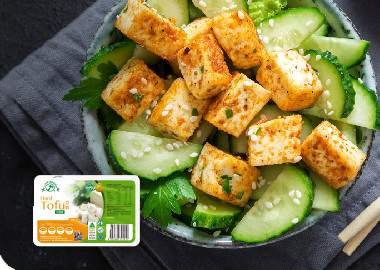 Hard Tofu